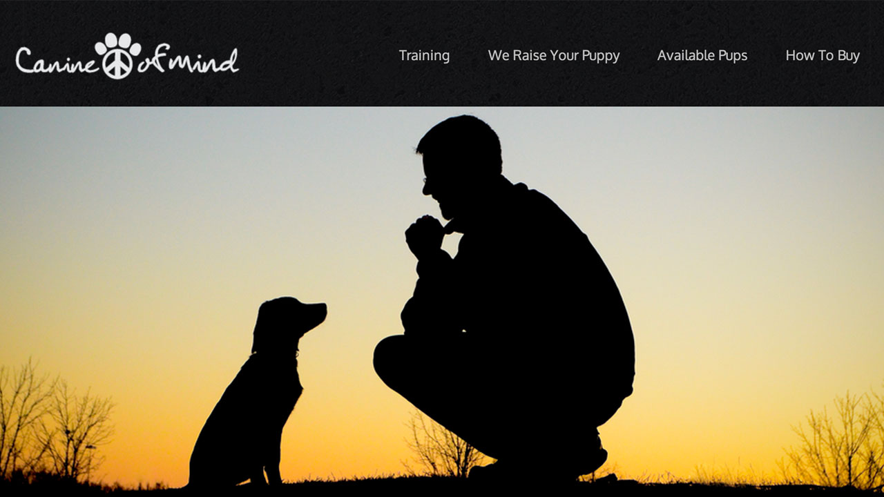 Canine Peace of Mind | Consonant Music Clients